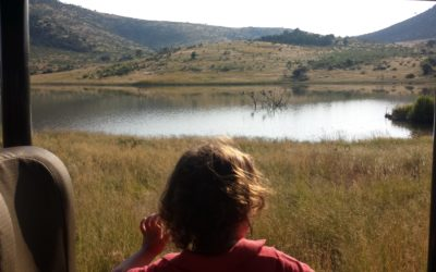 How To Do An African Safari With Young Kids